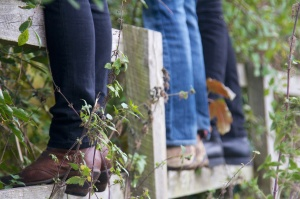 Picking sloes in Oxfordshire - 2014